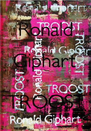 Roman Troost van Ronald Giphart waarvan de kaft door Ruud de Wild is ontworpen.
